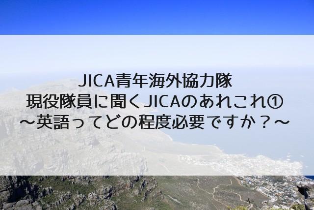 JICA 青年海外協力隊 30代 女性 現役 アフリカ 英語 英会話 TOEIC
