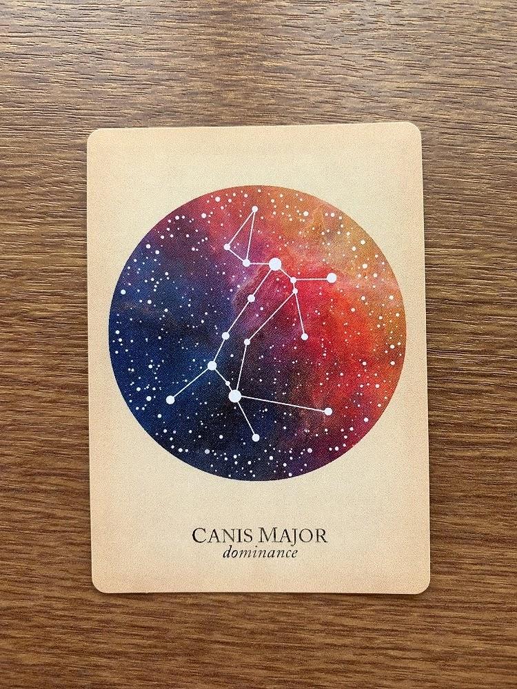 CANIS MAJOR dominance おおいぬ座 大犬座 compendium of constellations 星座 オラクルカード タロット 日本語 解説 支配 優性 優勢 優越