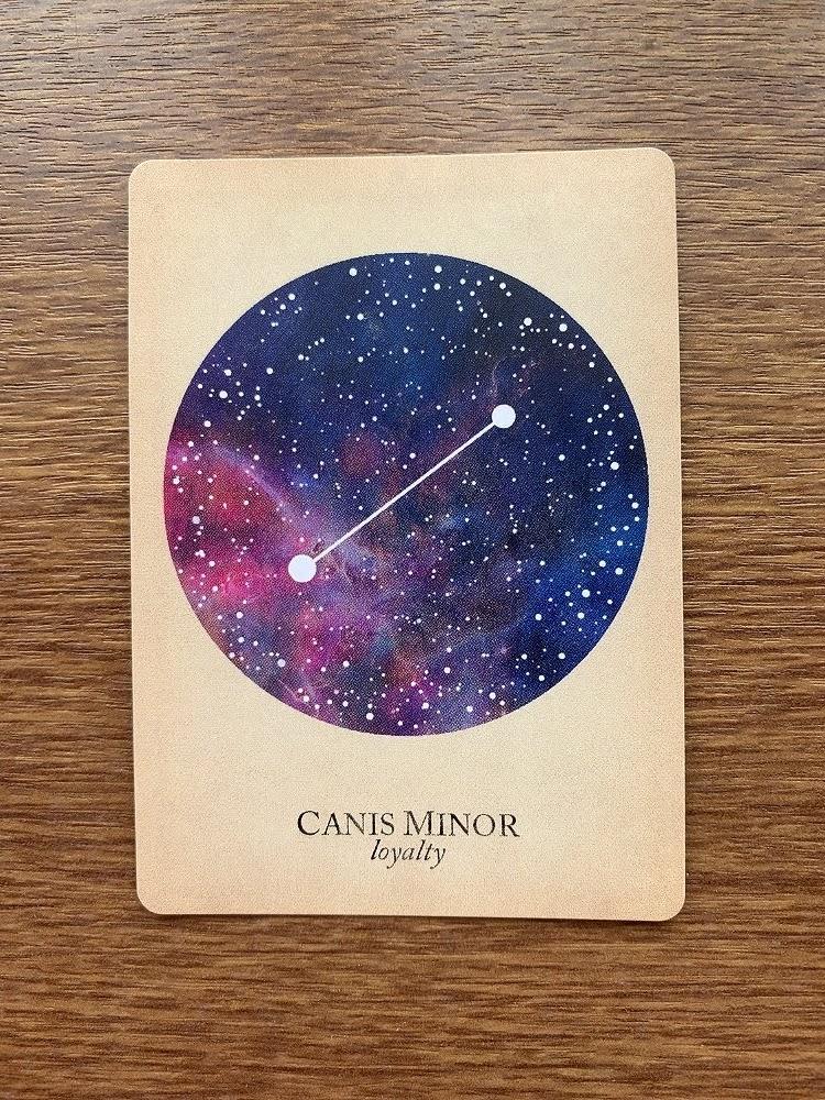 CANIS MINOR loyalty こいぬ座 小犬座 compendium of constellations 星座 オラクルカード タロット 日本語 解説 忠誠 忠義 信義