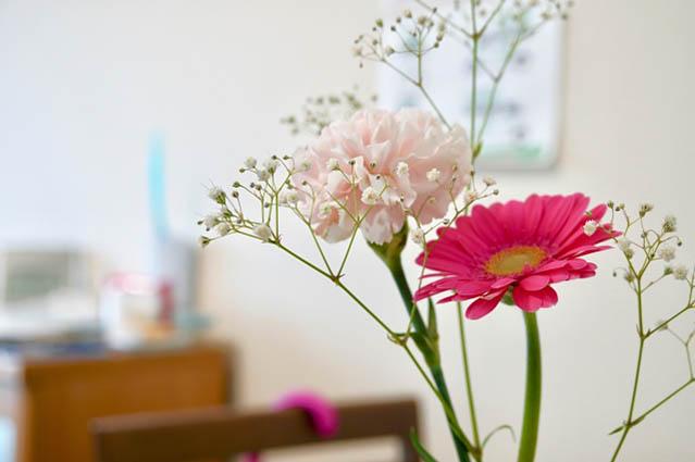 ブルーミーライフ 体験プラン レギュラープラン 比較 おすすめ 理由 メリット デメリット サービス 内容 特長 強み 花の定期便 サブスクリプション Bloomee LIFE