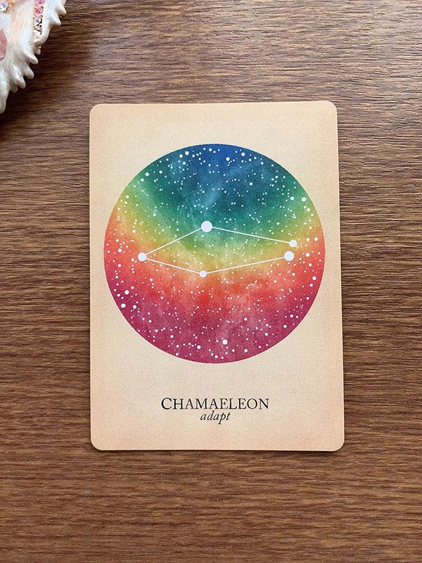 CHAMAELEON adapt カメレオン座 compendium of constellations 星座 オラクルカード タロット 日本語 解説 適応する 当てはめる 適応させる