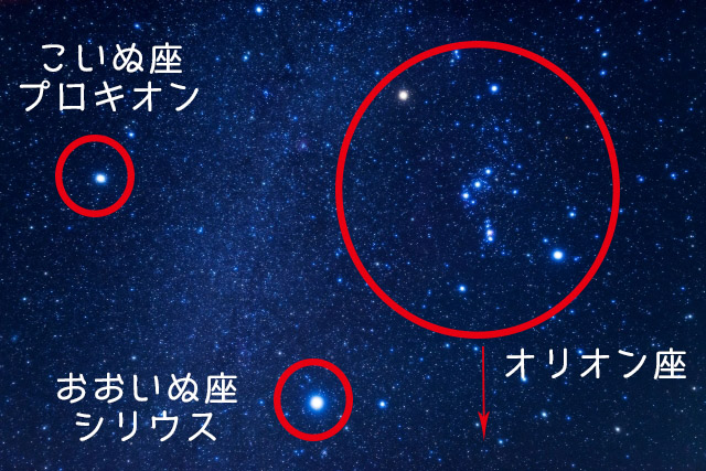 COLUMBA fertility はと座 compendium of constellations 星座 オラクルカード タロット 日本語 解説 受胎能力 肥沃 多産