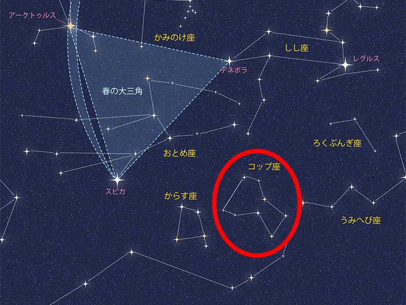 CRATER abundance コップ座 compendium of constellations 星座 オラクルカード タロット 日本語 解説 豊かさ 豊富