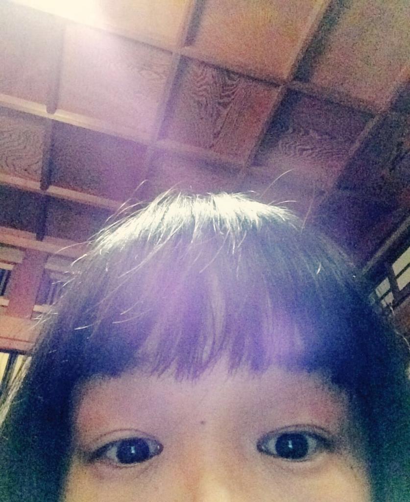 f:id:twinklesachiko:20161119004717j:plain