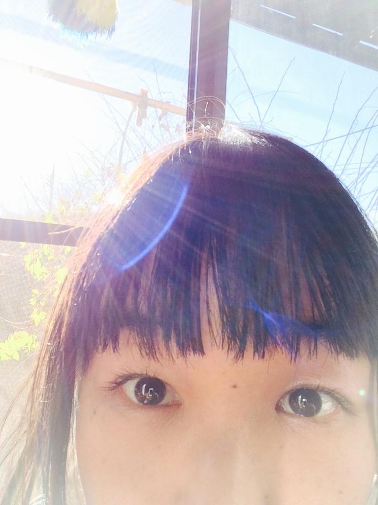 f:id:twinklesachiko:20161210173248j:plain