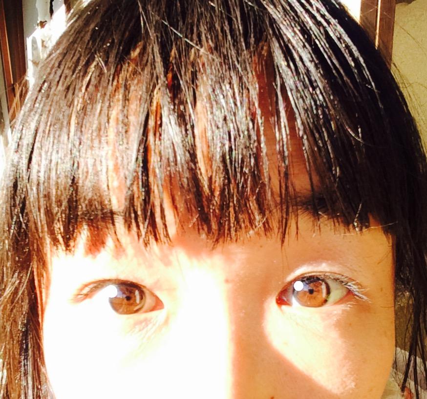 f:id:twinklesachiko:20161210173423j:plain