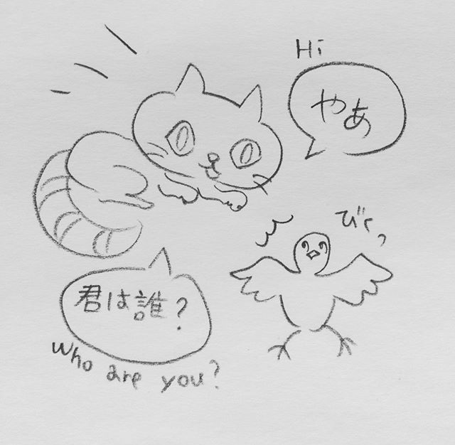f:id:twinklesachiko:20180105161638j:plain