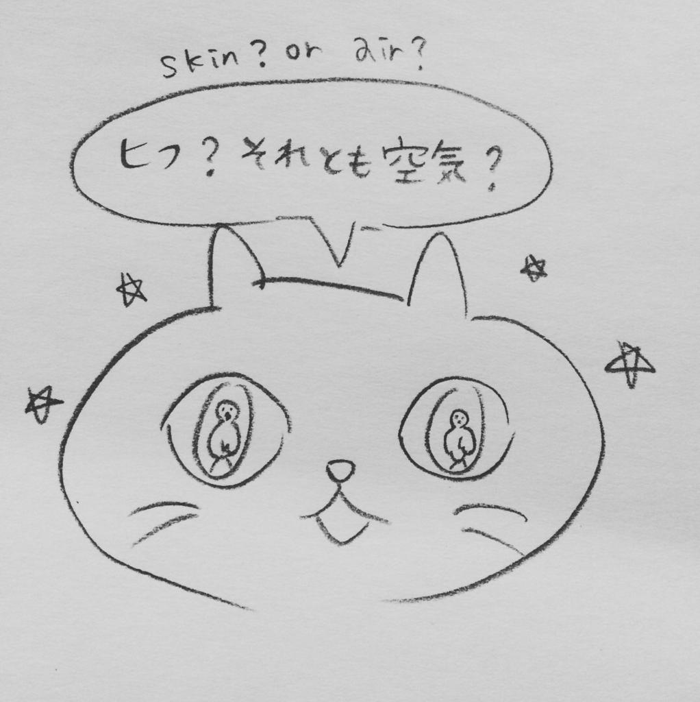 f:id:twinklesachiko:20180105161837j:plain