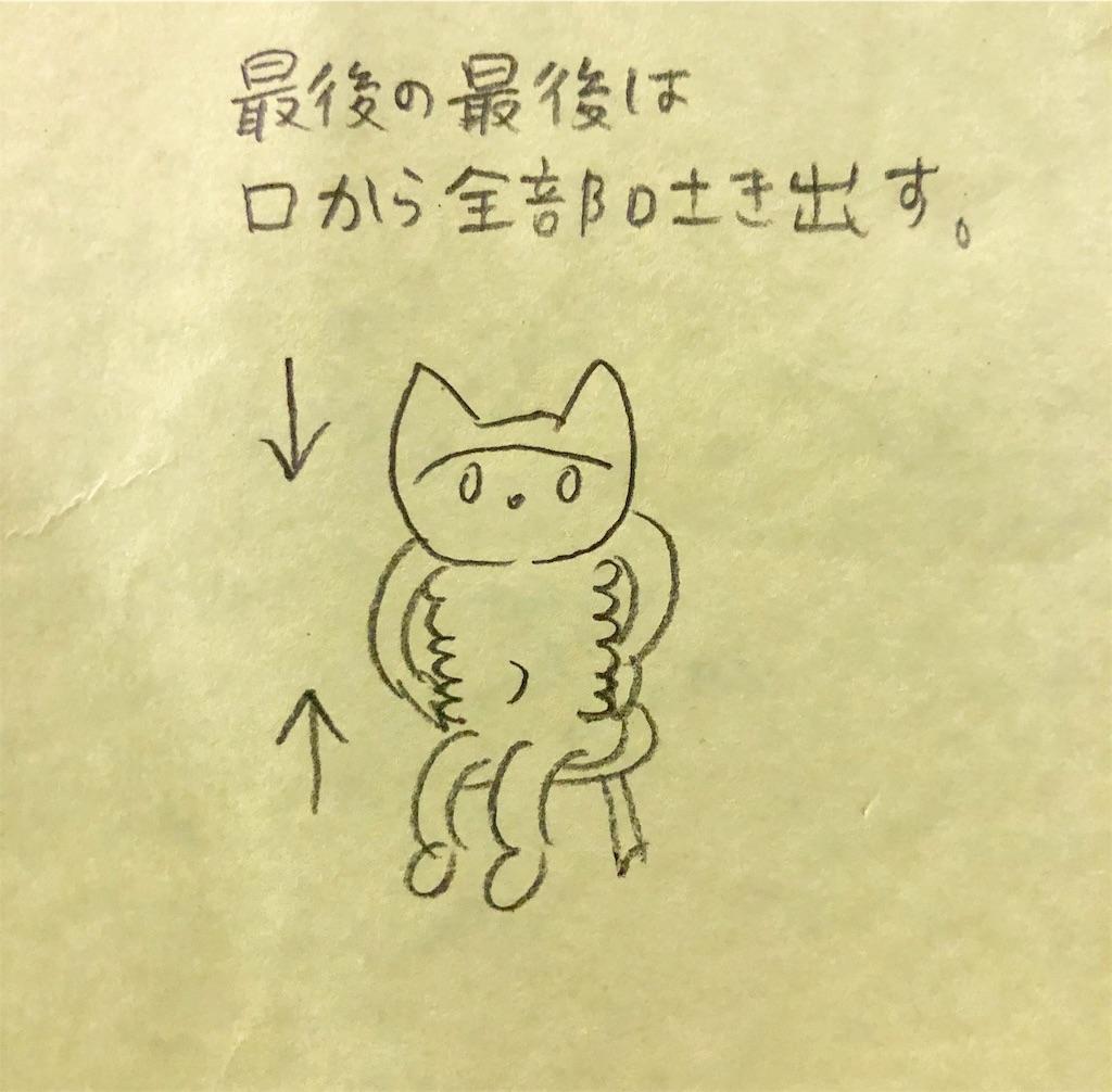 f:id:twinklesachiko:20190109214356j:plain