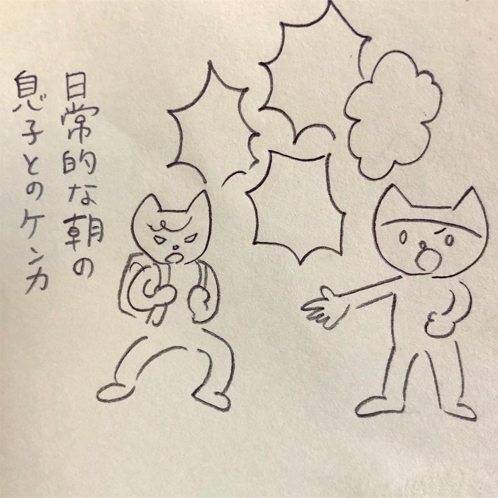 f:id:twinklesachiko:20190110160822j:plain