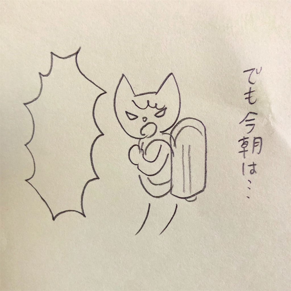 f:id:twinklesachiko:20190110160826j:plain