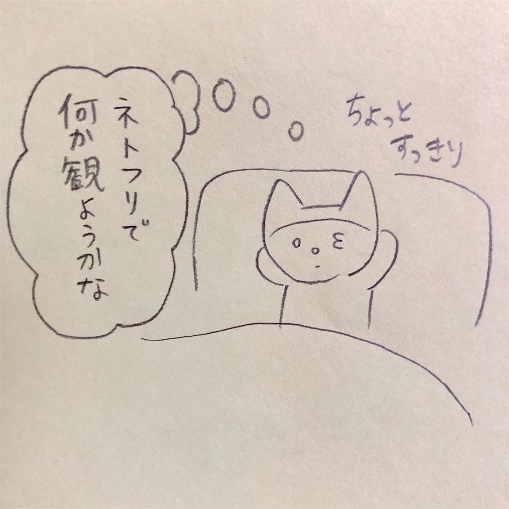 f:id:twinklesachiko:20190110160916j:plain