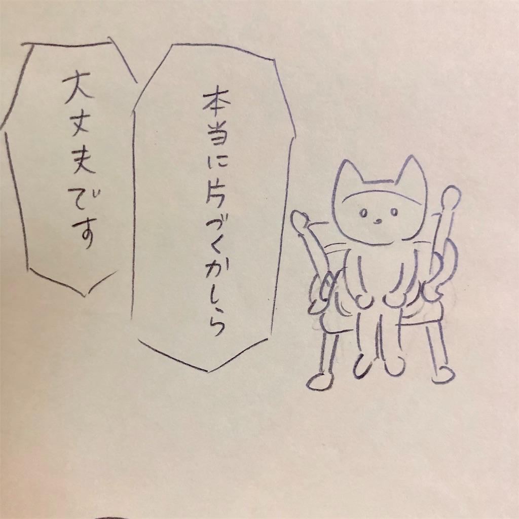 f:id:twinklesachiko:20190110165235j:plain