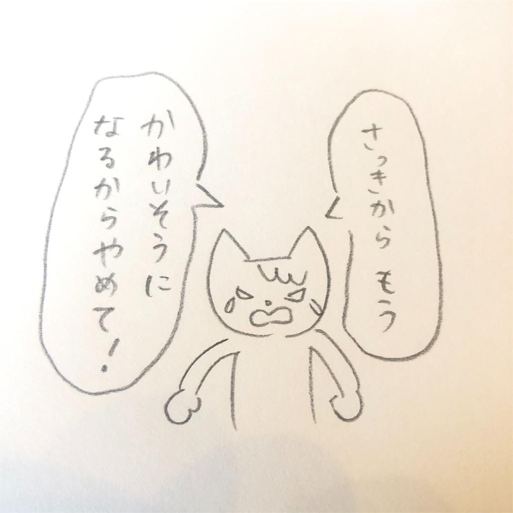 f:id:twinklesachiko:20190125112109j:plain