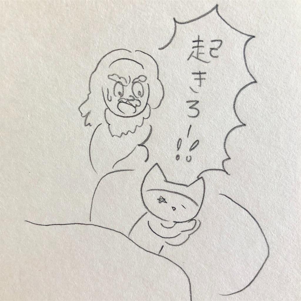 f:id:twinklesachiko:20190127111646j:plain