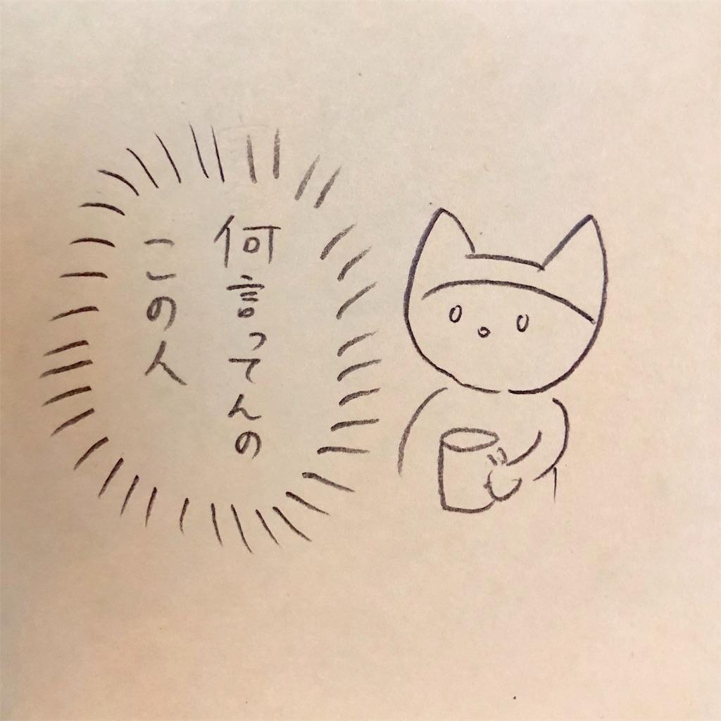 f:id:twinklesachiko:20190218165039j:plain