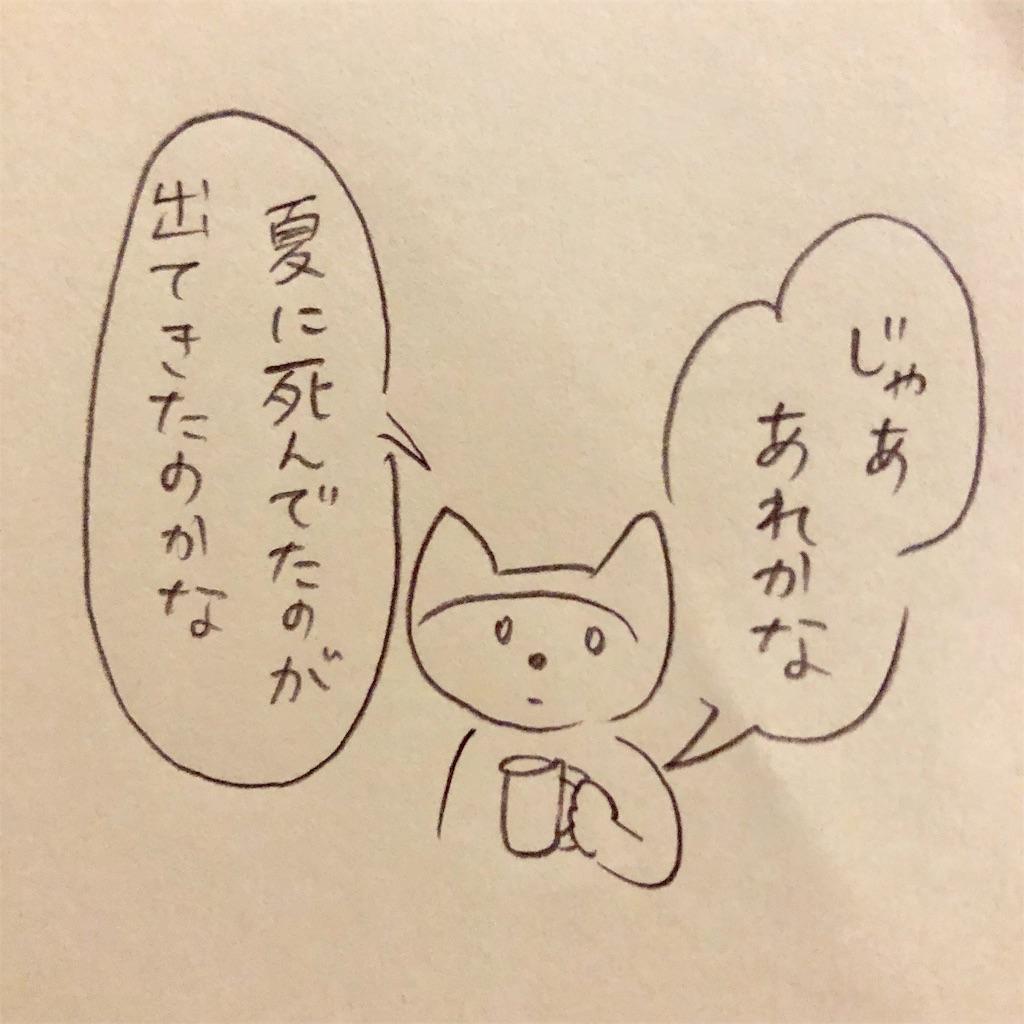 f:id:twinklesachiko:20190218210847j:image