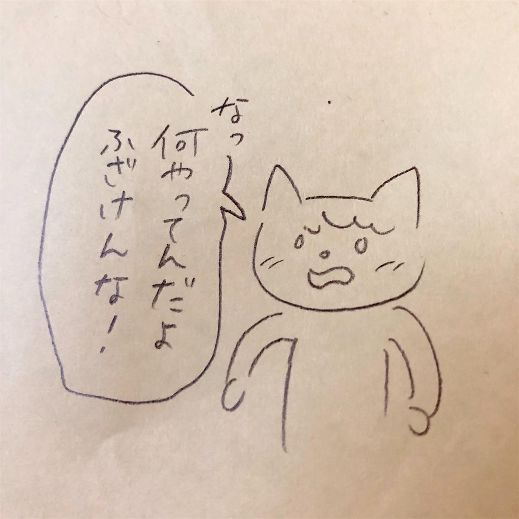f:id:twinklesachiko:20190219135252j:image