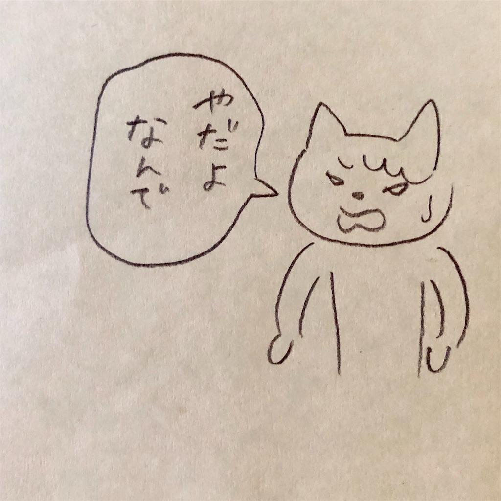 f:id:twinklesachiko:20190219135611j:plain