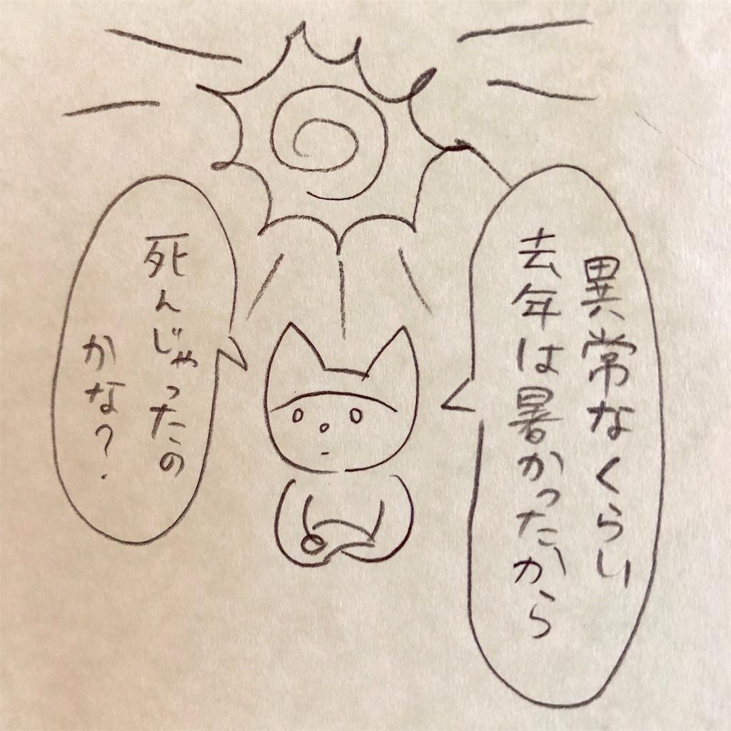 f:id:twinklesachiko:20190222152448j:image