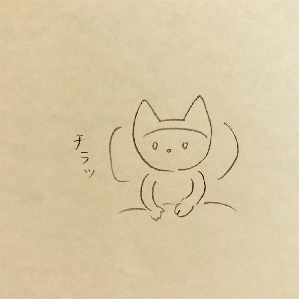 f:id:twinklesachiko:20190223011833j:image