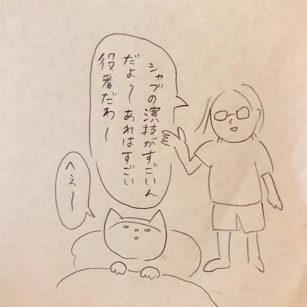 f:id:twinklesachiko:20190226154102j:image