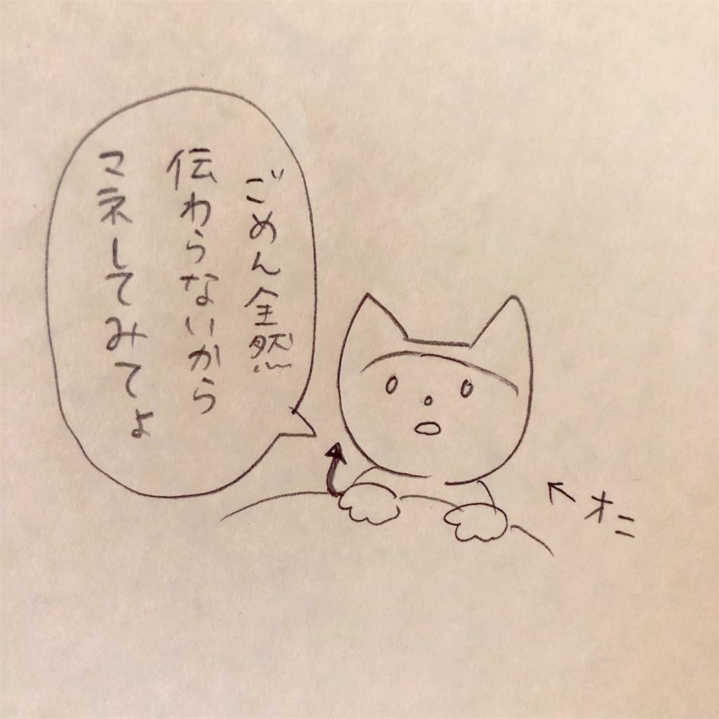 f:id:twinklesachiko:20190226154116j:image