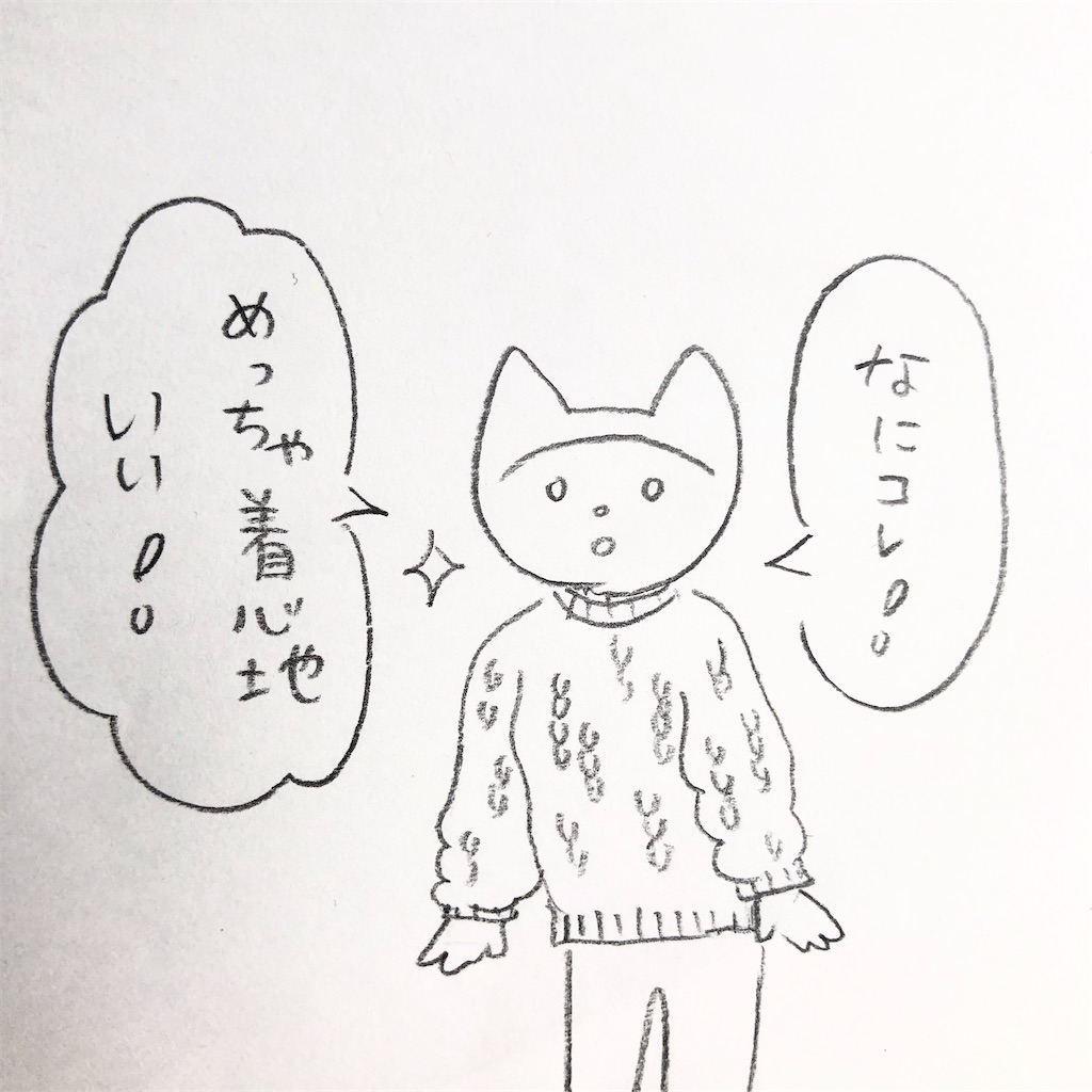 f:id:twinklesachiko:20191225135601j:image