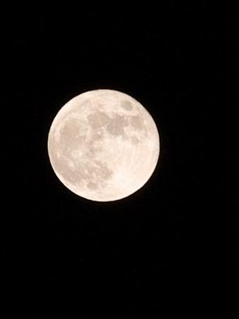 ちょうど真上に付近にあった月。夕方よりもちょっと小さい。