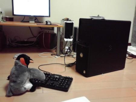 ペンギンがサーバー構築を始めたようです