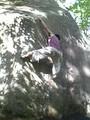 [toriaezu]南アルプスの山でロッククライミングしてきました