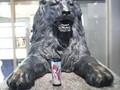 [kuroreva]ライオン像