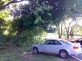 私のお車は骨董品に近いモノがあるが、かっこいいので気に入 ってる