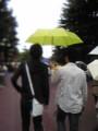 [kuma_ryu]タレとさわすーがラブ傘。爆発しろ!!