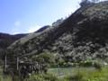 江川ダムから小石原。すすき山があった。かなりの酷道だわ500号線