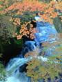 また日光行っちゃった!3週間前に行ったときは、紅葉してる木なんて