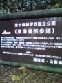 [←樹海]┗(^o^ )┓三