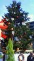 このくそ寒いのにLunch@outside! under the Christmas tree@産経building