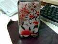 [tornikki][iPod touch]裏、ゴスっぽいお花です
