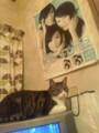 猫とポリリズム