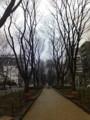 [sorano]雨の定禅寺通りなう