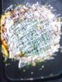 20090314202108