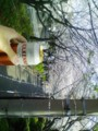 桜坂とやらに来てみた。夜勤明けの朝ビール最高。
