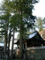 山中の神社は雰囲気最高っすねえ。榛名神社もそうでしたけど。