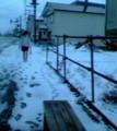 まあ、昨日から吹雪いてたしな…