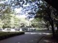 自宅近くにこんな公園があったなんて。 2 年目の新発見