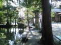 [t_t]風光明媚な大縣神社、皆さんも一度訪れてみてはいかがでしょうか。と