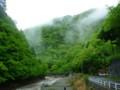 中津川新緑そして濁流 - 下流の方はダム建設ちゅう