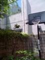 バスケットゴールもあります!