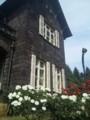女の子の夢の家
